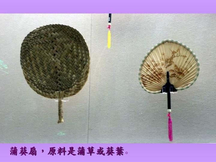 蒲葵扇,原料是蒲草或葵葉