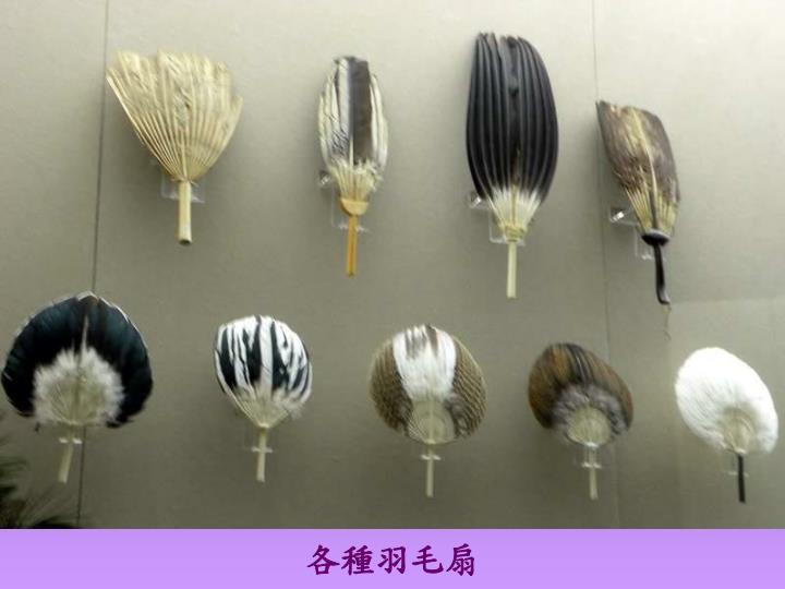 各種羽毛扇