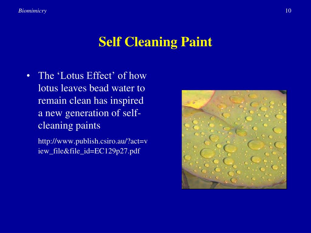 Ppt Tools For Innovation Biomimicry Powerpoint Presentation Id 134900