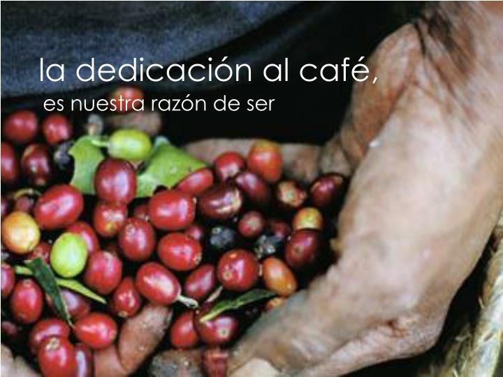 la dedicación al café,