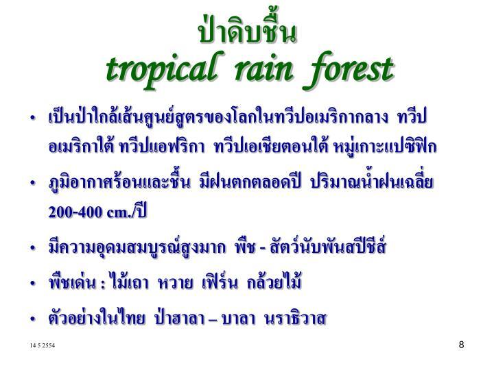 ป่าดิบชื้น