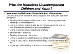 who are homeless unaccompanied children and youth