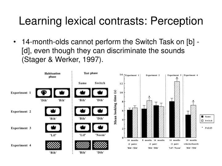 Learning lexical contrasts: Perception