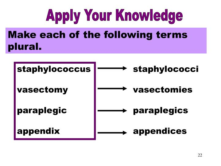 Apply Your Knowledge Part 2