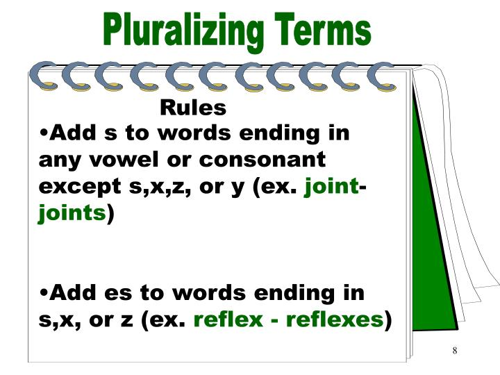 Pluralizing Terms