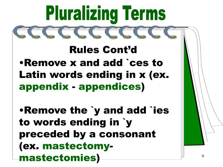 Pluralizing Terms Part 2