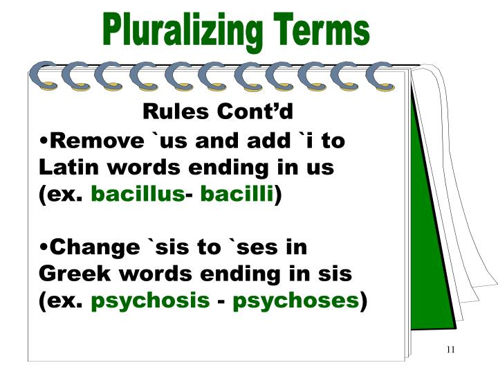 Pluralizing Terms Part 4