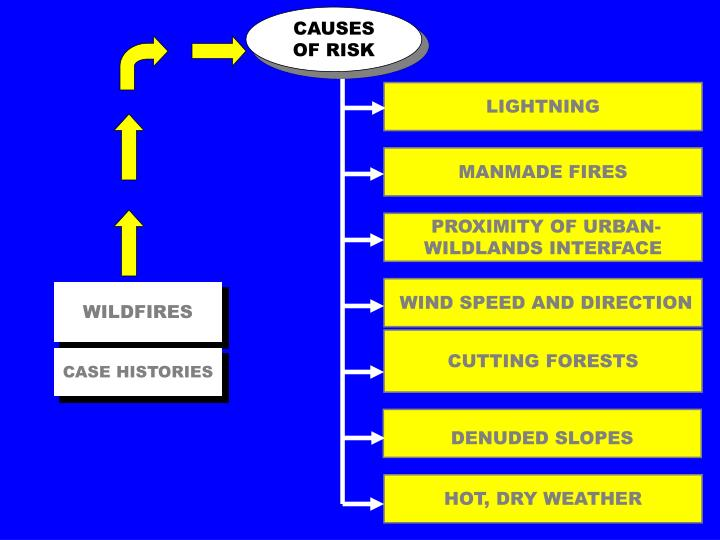 CAUSES OF RISK