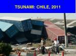 tsunami chile 2011