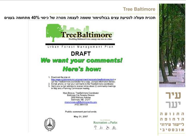 Tree Baltimore