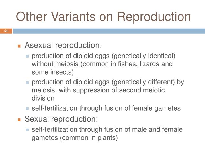 Other Variants on Reproduction