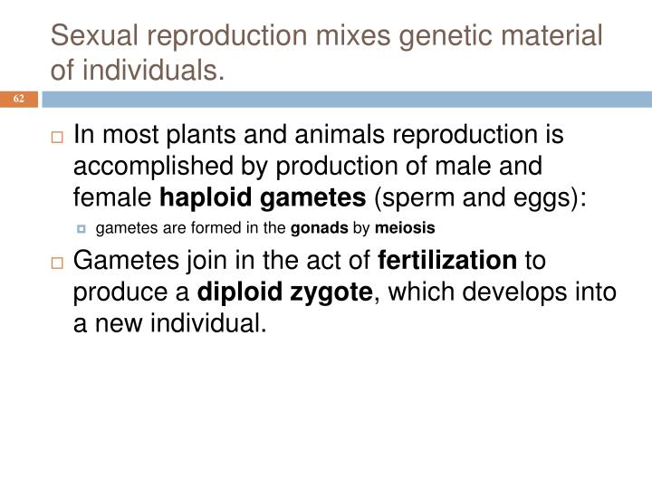 Sexual reproduction mixes genetic material of individuals.