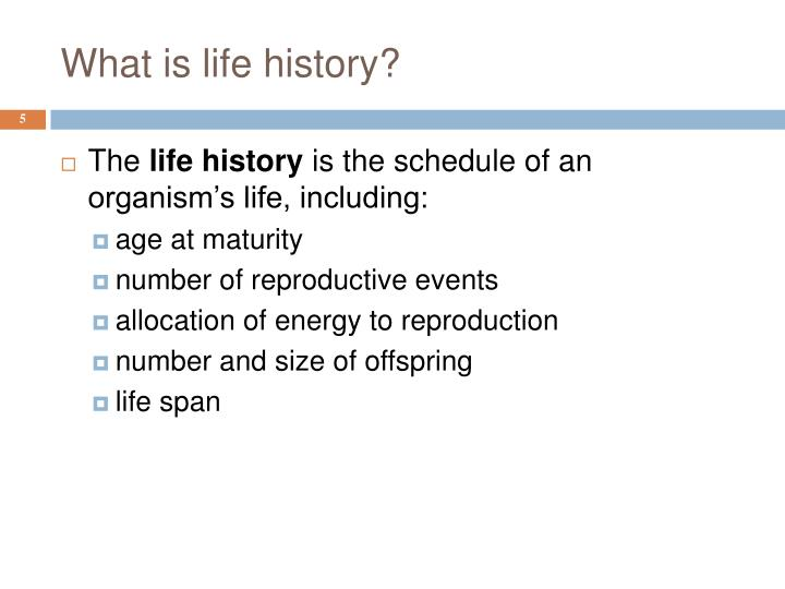 What is life history?