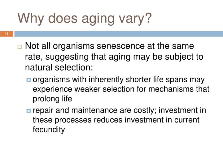 Why does aging vary?