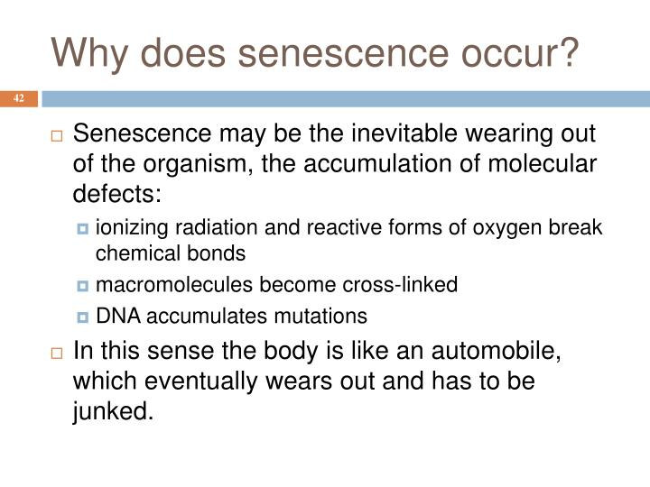 Why does senescence occur?