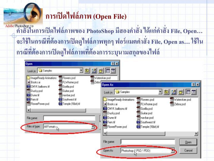 การเปิดไฟล์ภาพ (Open File)