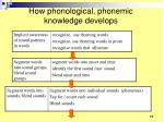 how phonological phonemic knowledge develops