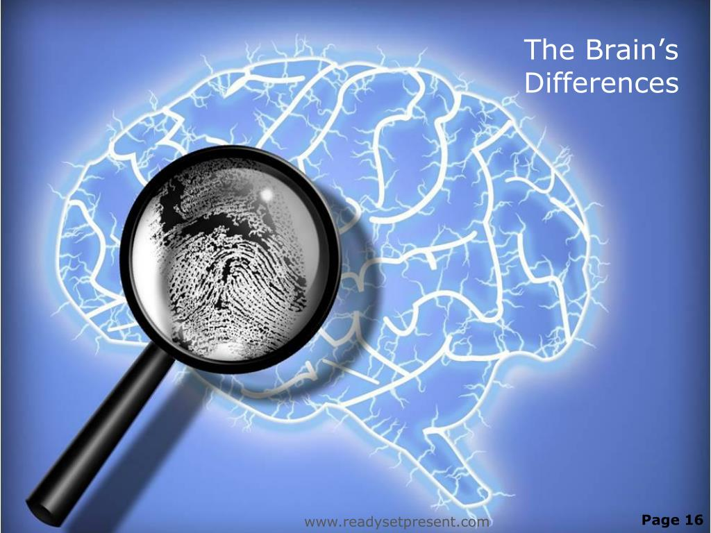 The Brain's Differences