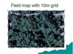 field map with 10m grid