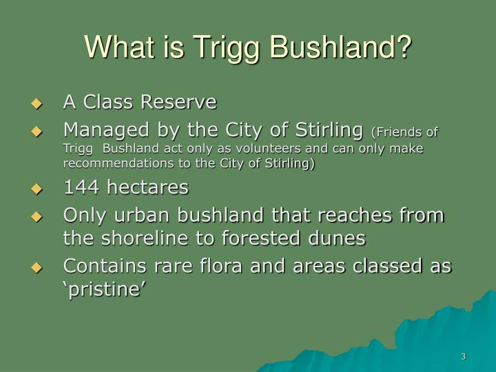 What is Trigg Bushland?
