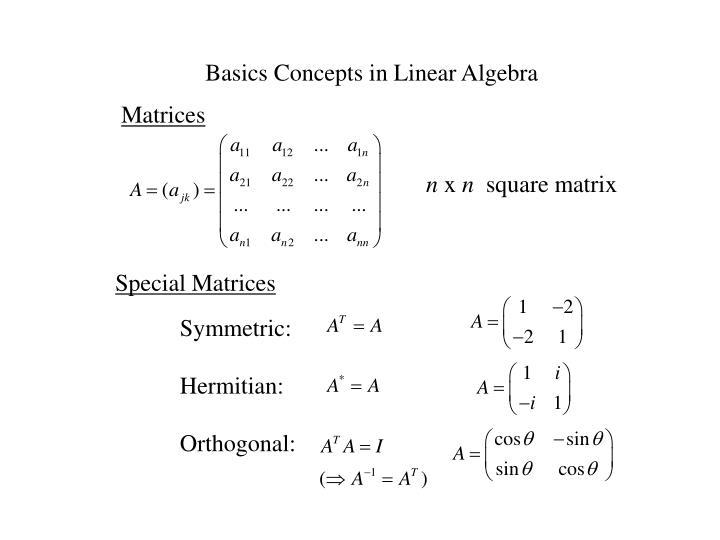Basics Concepts in Linear Algebra