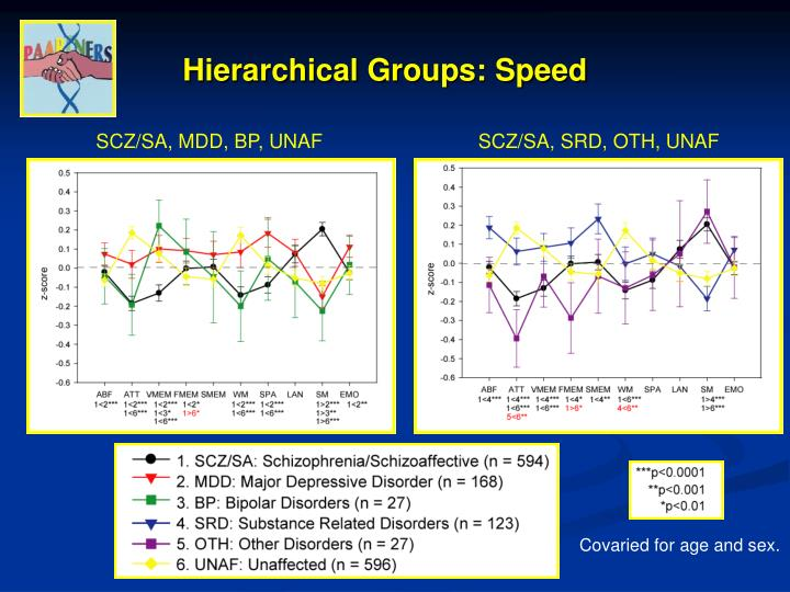 Hierarchical Groups: Speed
