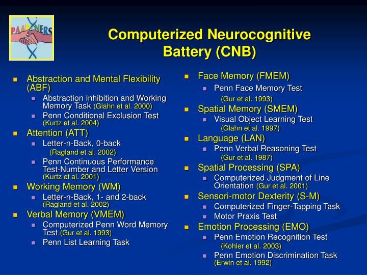 Computerized Neurocognitive Battery (CNB)