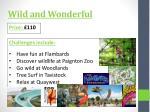 wild and wonderful