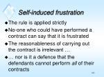 self induced frustration1