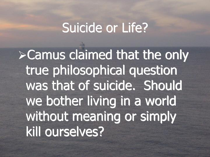 Suicide or Life?