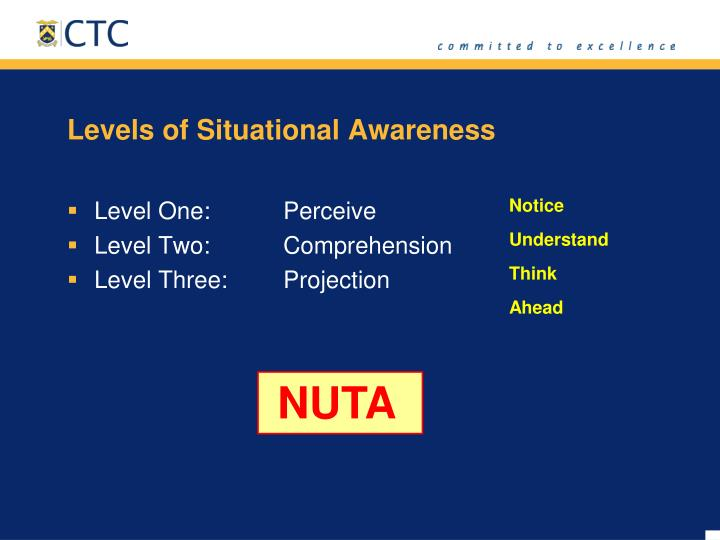 Levels of Situational Awareness