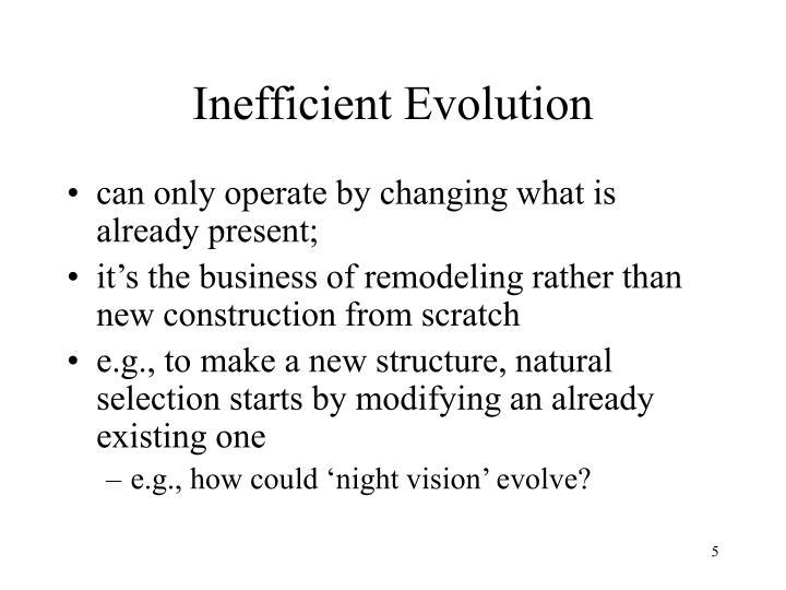 Inefficient Evolution