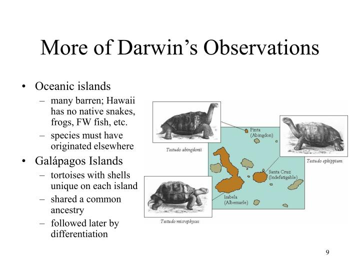 More of Darwin's Observations
