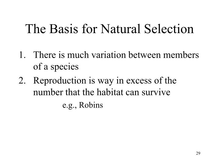 The Basis for Natural Selection