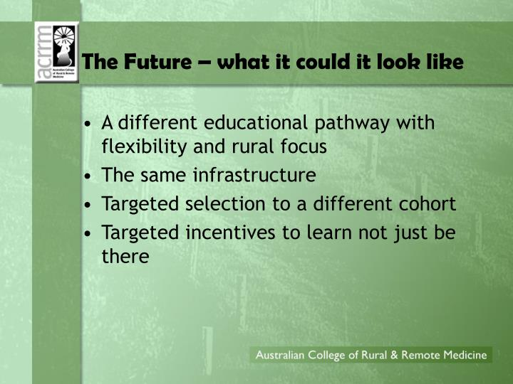 The Future – what it could it look like