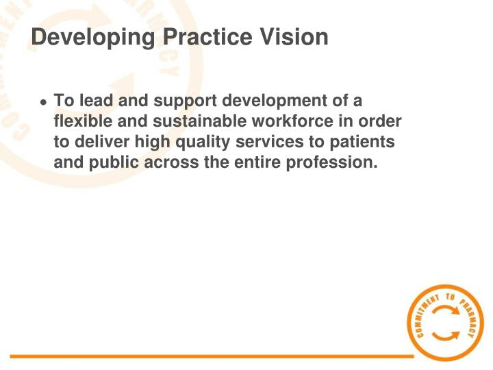 Developing Practice Vision