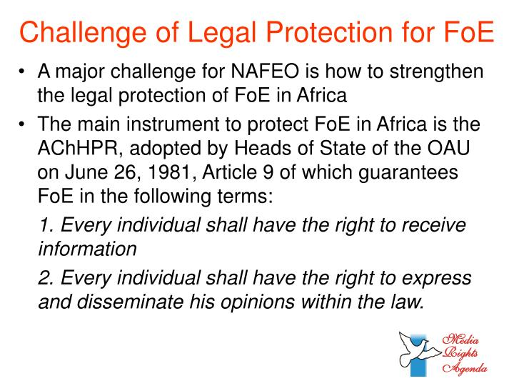 Challenge of Legal Protection for FoE