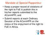 mandate of special rapporteur2