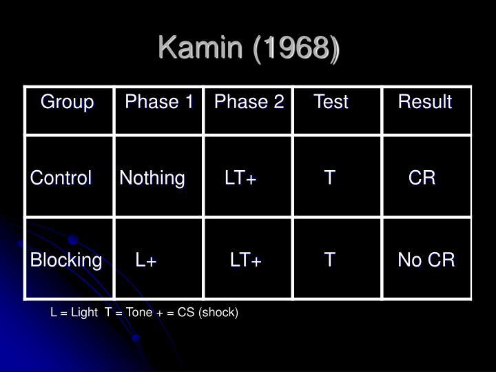 Kamin (1968)
