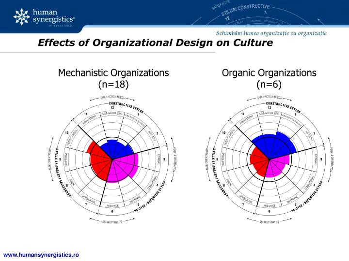 Effects of Organizational Design on Culture