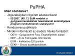 pupha2