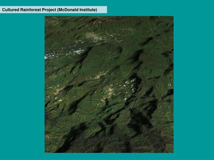 Cultured Rainforest Project (McDonald Institute)