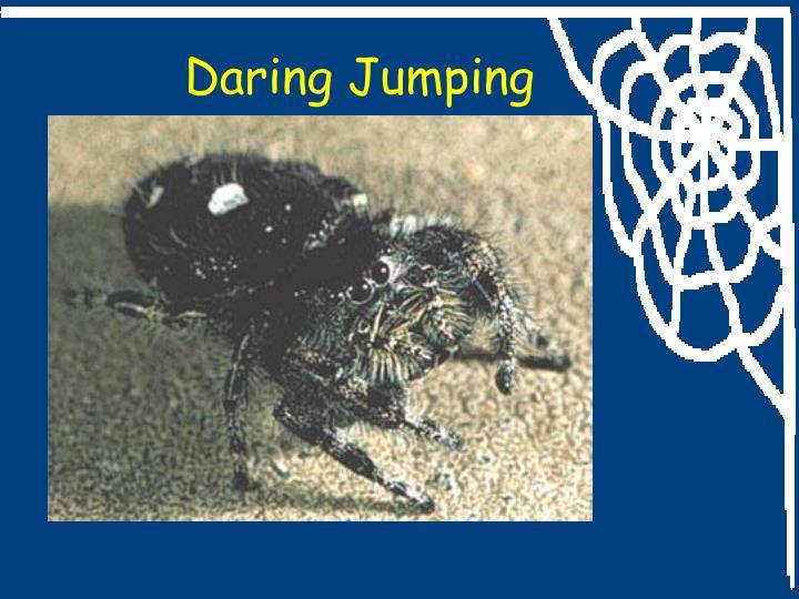 Daring Jumping
