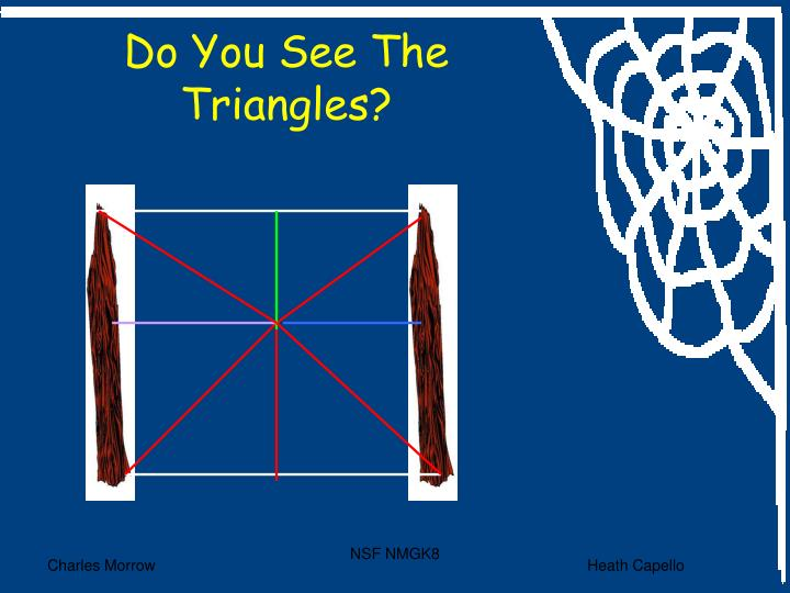Do You See The Triangles?