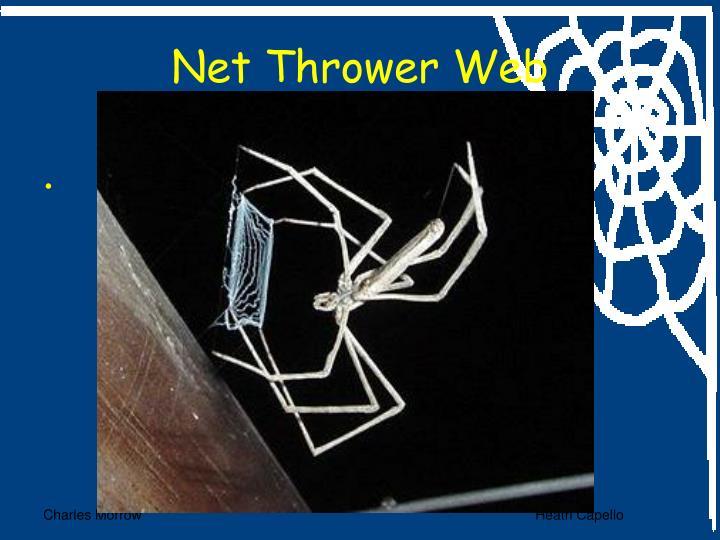 Net Thrower Web