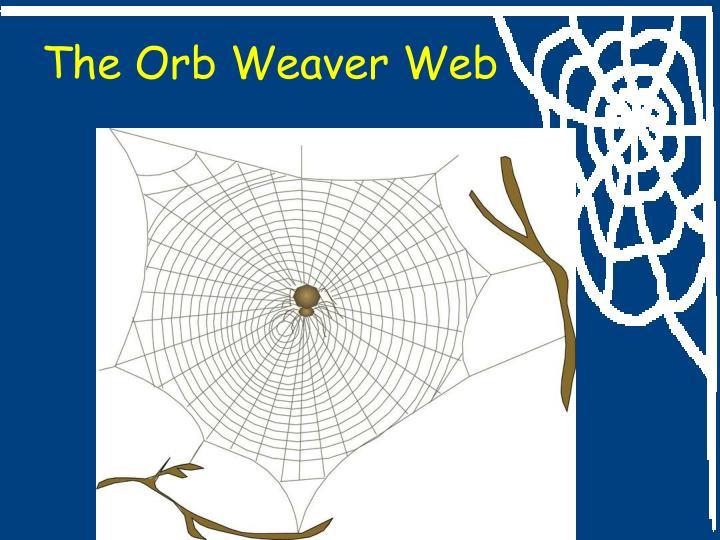 The Orb Weaver Web
