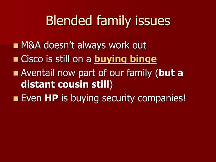 Blended family issues