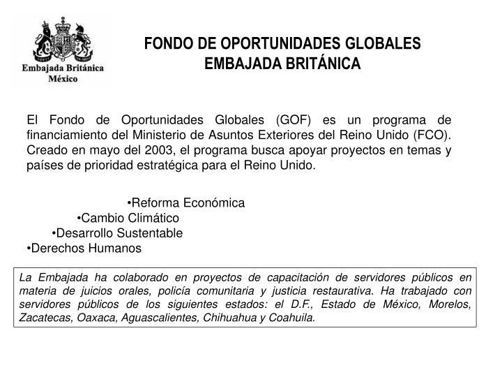 FONDO DE OPORTUNIDADES GLOBALES