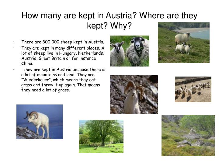 How many are kept in Austria? Where are they kept? Why?