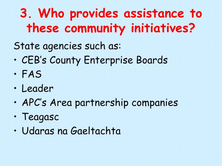 3. Who provides assistance to these community initiatives?